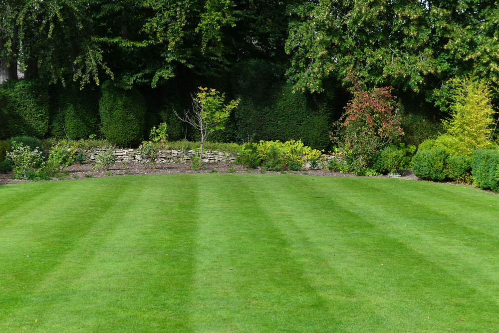 Fixing an Uneven Lawn